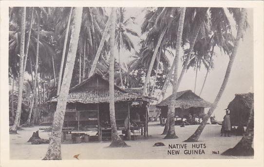 Native Huts New Guinea Real Photo