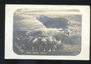 RPPC ROBINSON ILLINOIS PIG PIGS FARM FARMING PIGLETS REAL PHOTO POSTCARD ILL.