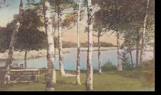 Maine Millbridge Picnic Grove Smiths Cove Handcolored Albertype