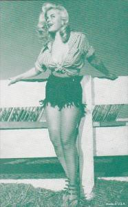 Vintage Arcade Card Pin Up Girl Sexy Semi Nude Risque