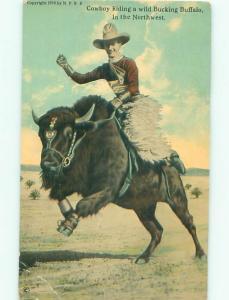 Pre-Linen Old West WESTERN COWBOY RIDING BUFFALO AC4493