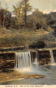 Parksville New York view of Falls of the Little Beaverkill antique pc ZA441359