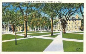 Cambridge MA~Criss-Crossing Paths @ Harvard College~Campus~1940s