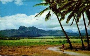 Hawaii Kauai Kapaa Sleeping GIant Mountain Formation 1960
