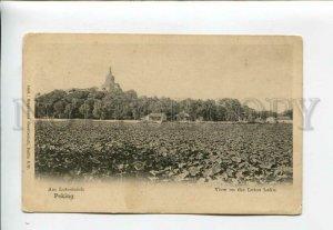 3158143 China Beijing PEKING Lotos Lake Vintage postcard
