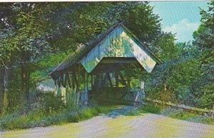 Covered Bridge Danville Green Banks Hollow Bridge Spans Joes Brook Vermont