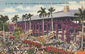 Florida Hialeah Rear View Of The Grandstand Hialeah Race Course Curteich