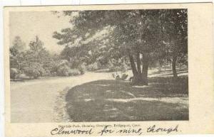Beardsly Park, Showing Shrubbery, Bridgeport, Connecticut, 00-10s