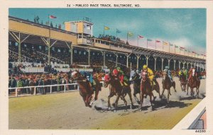 Maryland Baltimore Pimlico Race Track Horse Racing sk6314
