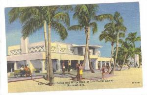 Coconut Palms and White Sand at Lido Beach Casino, Sarasota, Florida, 30-40s