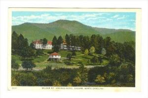 Balsam Mt Springs Hotel , BALSAM , North Carolina , 00-10s