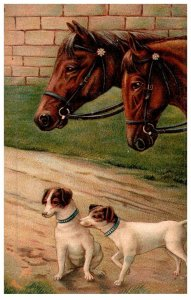 Dog , Horses and Dogs