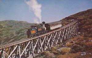 Famous Cog Railway Mt Washington White Mountains New Hampshire