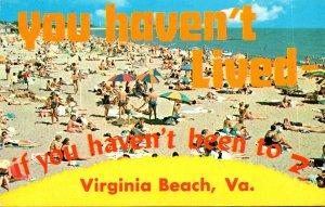 Virginia Virginia Beach Sun Bathers On The Beach