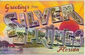 FL Silver Springs Greetings From