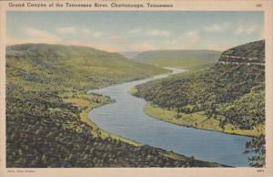 Tennessee Chattanooga Grand Canyon Of The Tennessee River