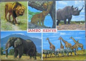 Kenya Jambo Animals Multi-view - posted 1988