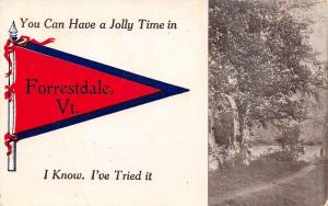 You Can Have A Jolly Time in Forrestdale Vermont~I Know~1912 Pennant Postcard
