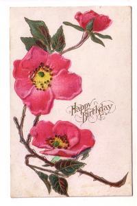 Wild Rose Branch, Birthday, Embossed
