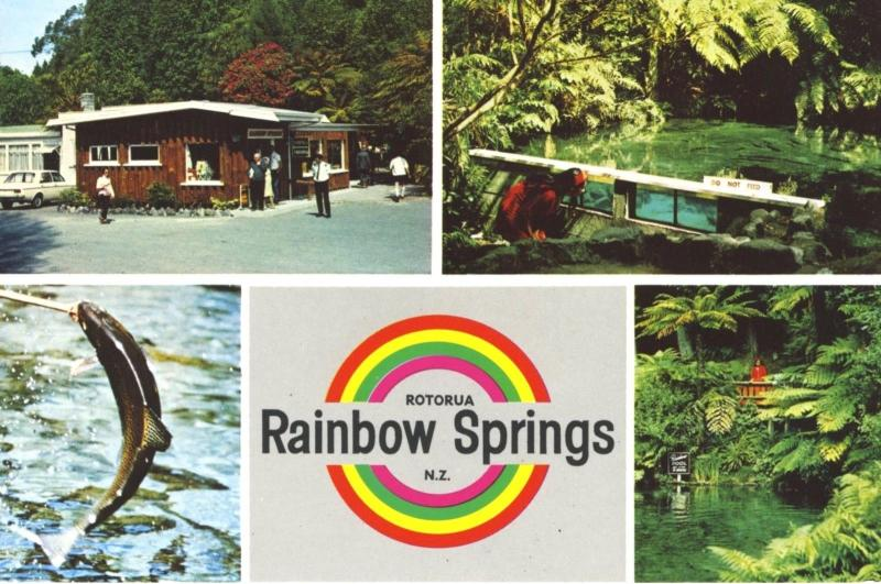Rainbow Springs Rotorua NZ New Zealand Multiview Unused Postcard D22