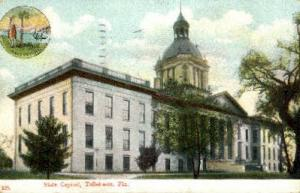 State Capitol Tallahassee FL 1909
