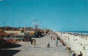 Florida Daytona Beach Amusement Center & Boardwalk