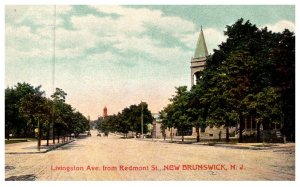 New Jersey  New Brunswick , Livingston Avenue from Redmont street