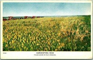 1910 TEXAS Tourism / Advertising Postcard HARVESTING RICE Field View - Unused