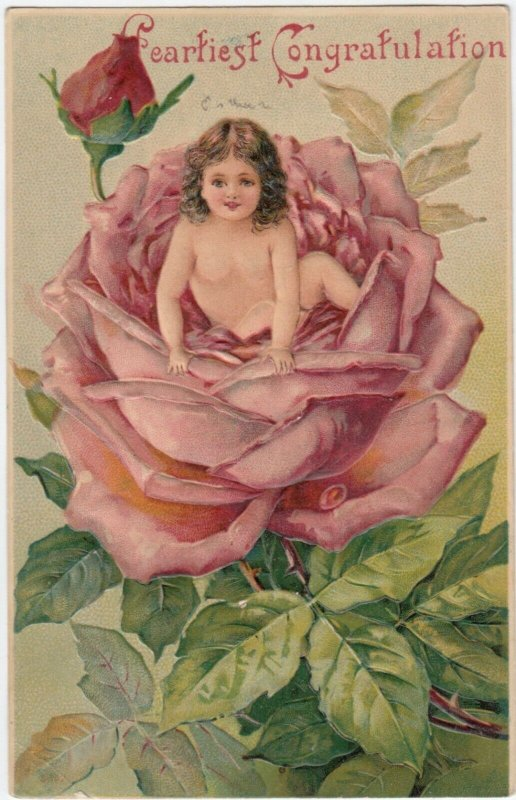 CONGRATULATION, PU-1910; Toddler sitting in a pink rose