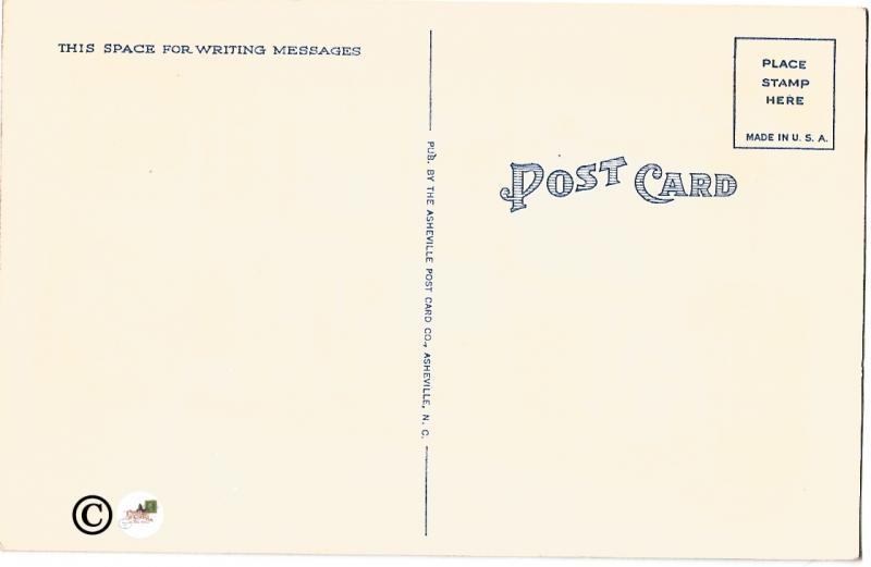 South Carolina Big Letter Large Letter Vintage Postcard Linen Postcard
