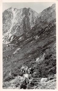 E59/ Trinity Alps California Postcard Real Photo RPPC c40s Horse Packing Trail