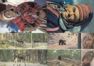 Norway Wild Deadly Animals & Sami Hunters 4x Norwegian Postcard s