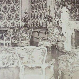 Mujer Salón Liechtenstein Real Palacio Viena Austria Foto Estereoscopia A119