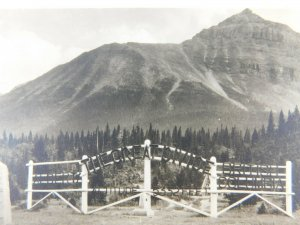 The Great Divide Continental Divide Alberta Canada Real Photo Vintage Postcard
