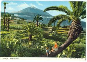 Spain, Tenerife, Canary Islands, 1970s used Postcard