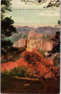 Grand Canyon from Point Imperial North Rim Arizona Vintage Postcard N16