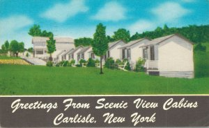 USA New York Carlisle Greetings from Scenic View Cabins 04.29