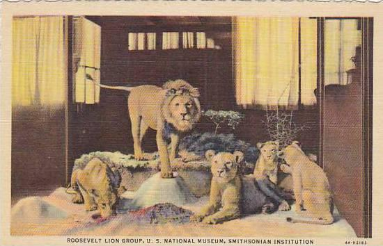 Roosevelt Lion Group Smithsonian Institution
