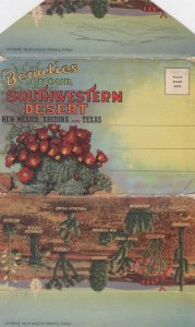 Beauties of our SOUTHWESTERN DESERT (USA) , 1930-40s