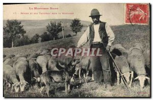 Old Postcard Dog Dogs the black mountain Shepherd and his flock in the mounta...