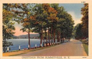 Summitville New York Greetings Road Scenic Vintage Postcard JC932813
