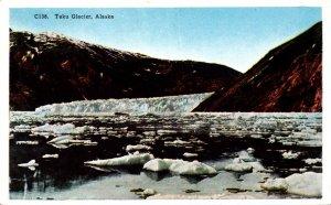 Alaska Taku Glacier