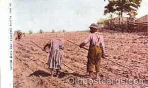 Cotton Industry, Black Americana 1908 crease right bottom corner, postal used...
