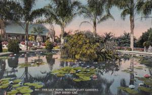California San Diego Mission Cliff Gardens Lily Pool
