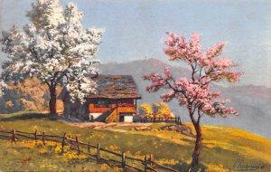 Residence Painting Switzerland Unused