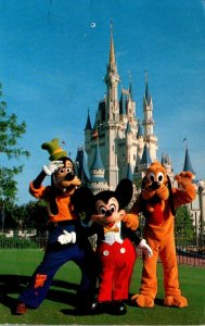 Walt Disney World Cinderella Castle  Mickey Mouse Pluto and Goofey 1982