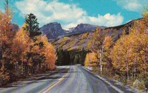 Colorado Rocky Mountain National Park Aspen Time On Highway To Bear Lake In R...