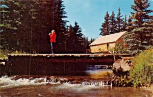 RED RIVER NEW MEXICO~MODERN CABIN IN VALLEY OF THE PINES POSTCARD
