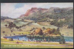 Northern Ireland Postcard - Pond and Cave Hill, Bellevue, Belfast   DC2169