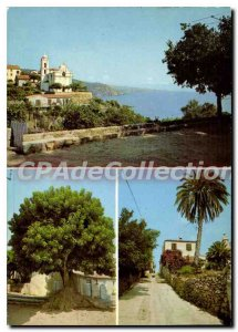 Postcard Modern Cargese Corsica The Church And The Gulf pokeweed dioca